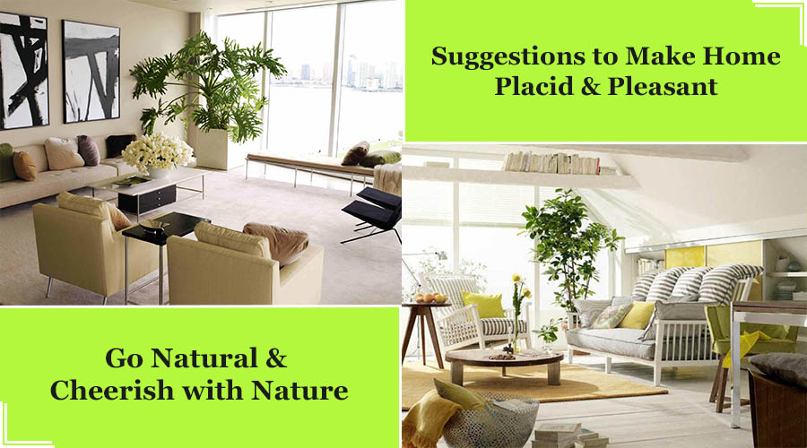 Suggestions to Make Home Placid & Pleasant